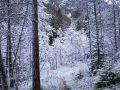 Bosco delle Seate d'inverno