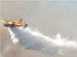 Canadair plane dropping water on a forest fire