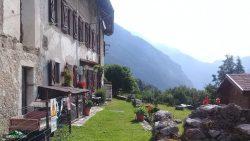 Patocco, Val Raccolana, sul Cjuc.  Esatate 2018